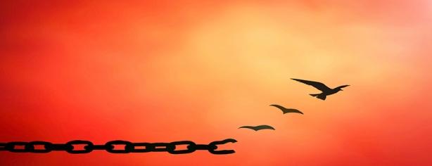 Como Se Libertar